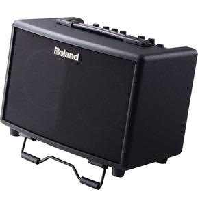 Roland 30w Acoustic Chorus Guitar Amplifier