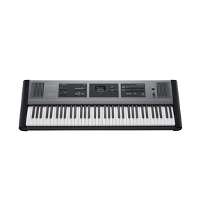 Dexibell Vivo P3 Portable Piano; 73 Keys