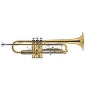 J. Michael 4810 Trumpet outfit